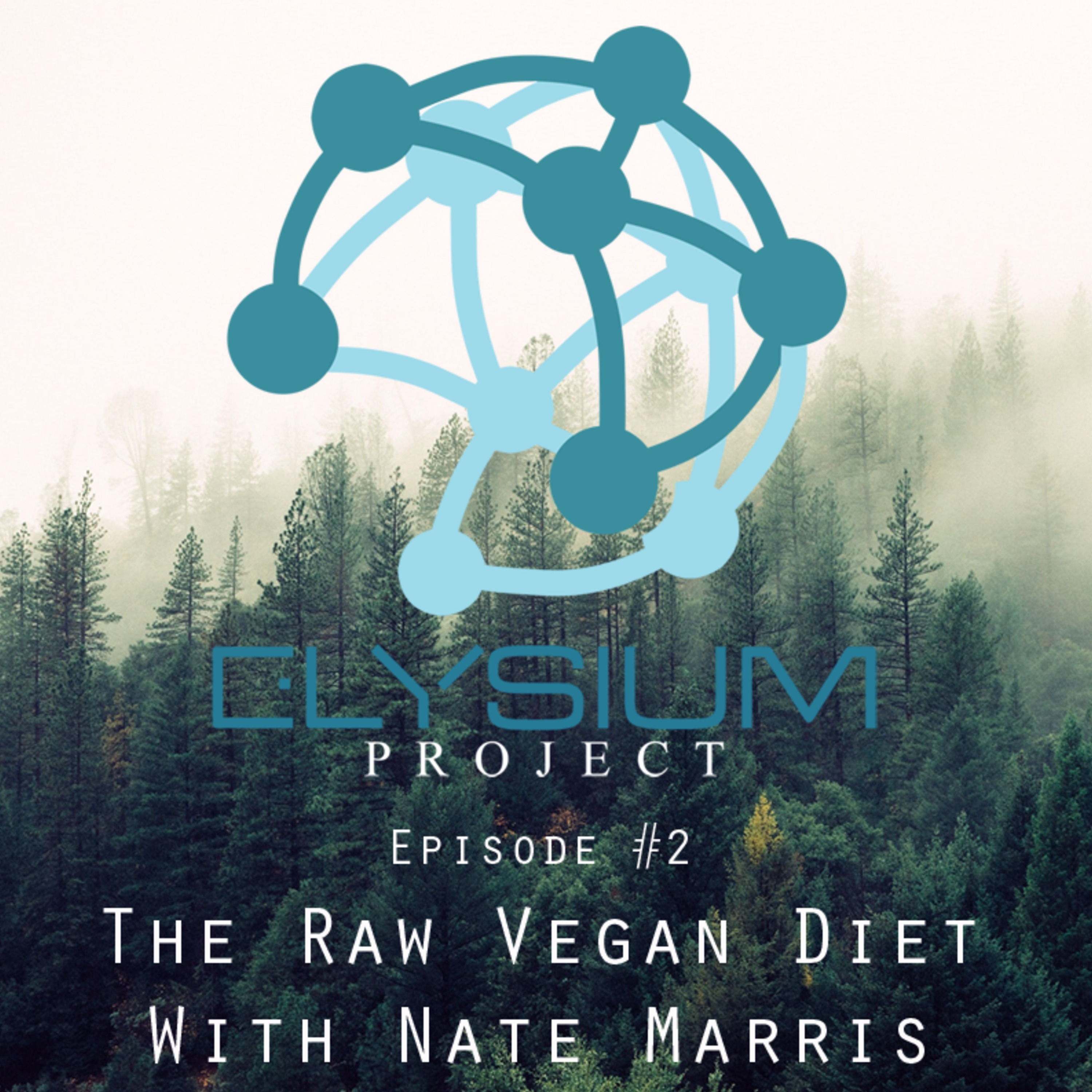 Episode 2: The Raw Vegan Diet with Nate Marris