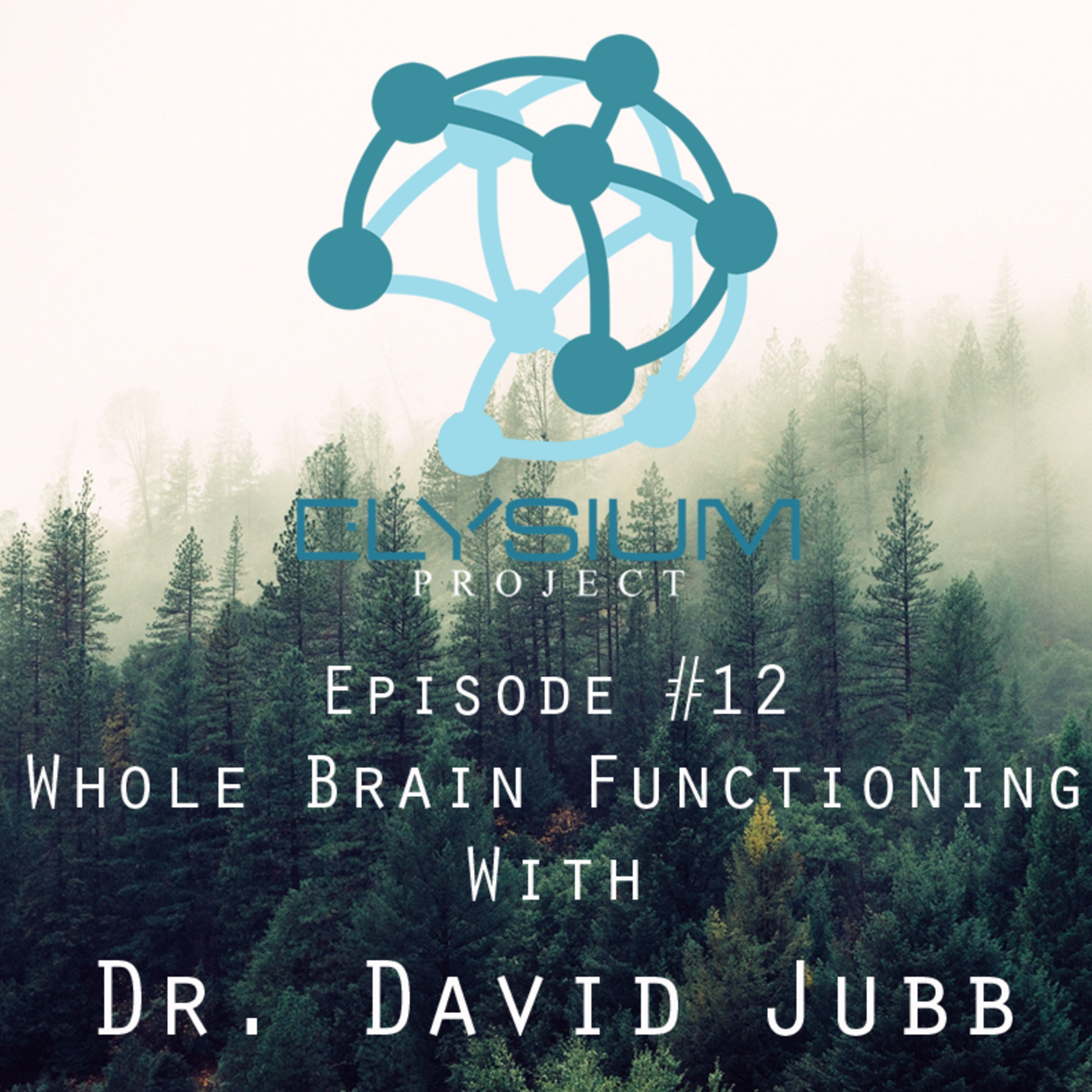 Episode 12: Whole Brain Functioning with Dr. David Jubb