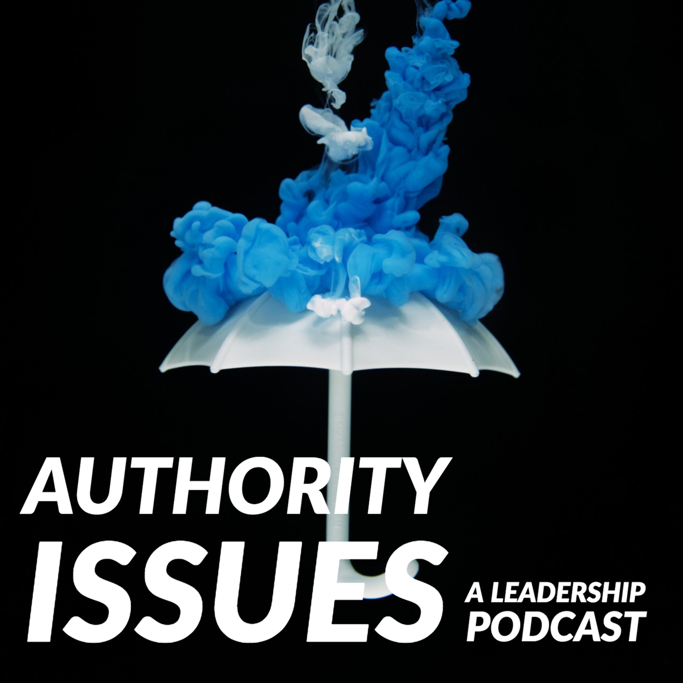 Authority Issues 5: Anca Mosoiu