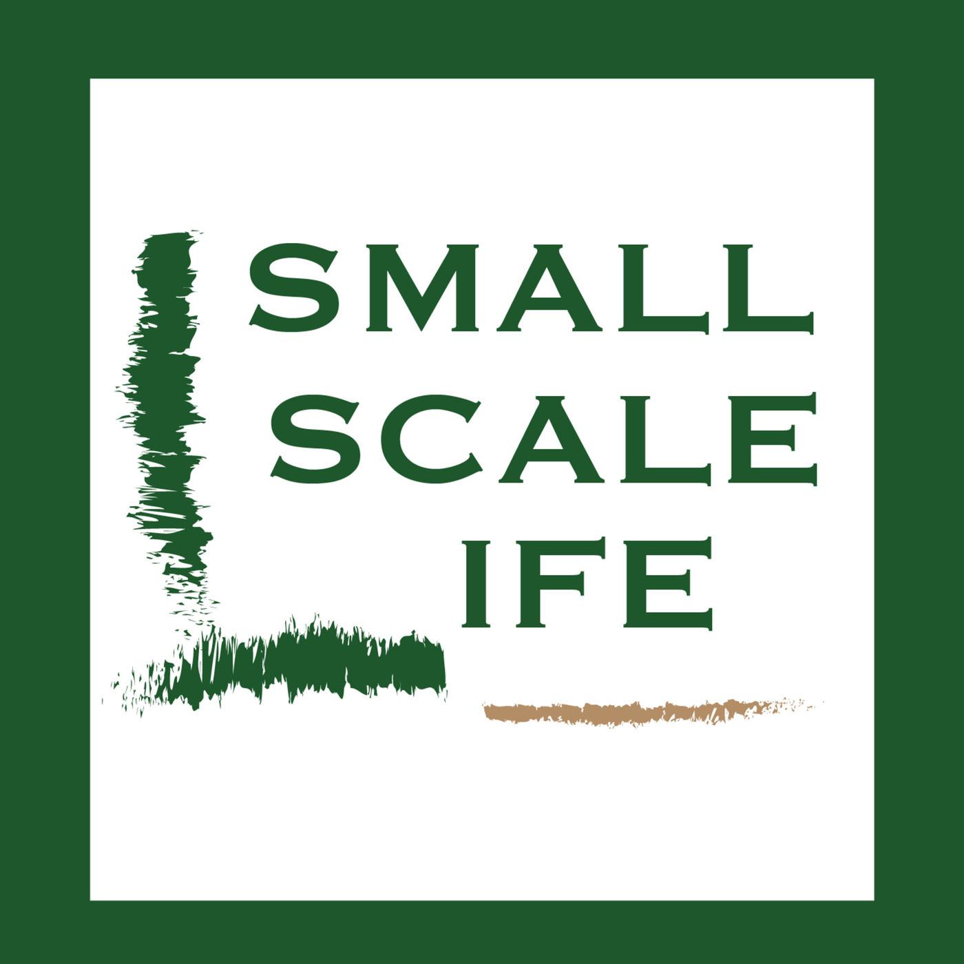 Small Scale Life: Michael Jordan's Beekeeping Jouney - S2E16