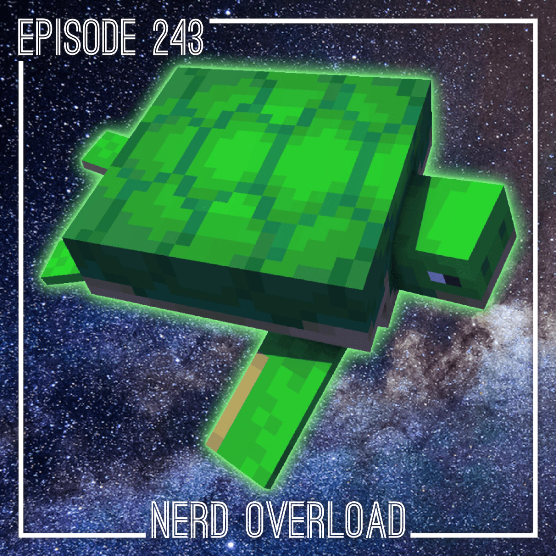 Episode 243 - Sea Turtles